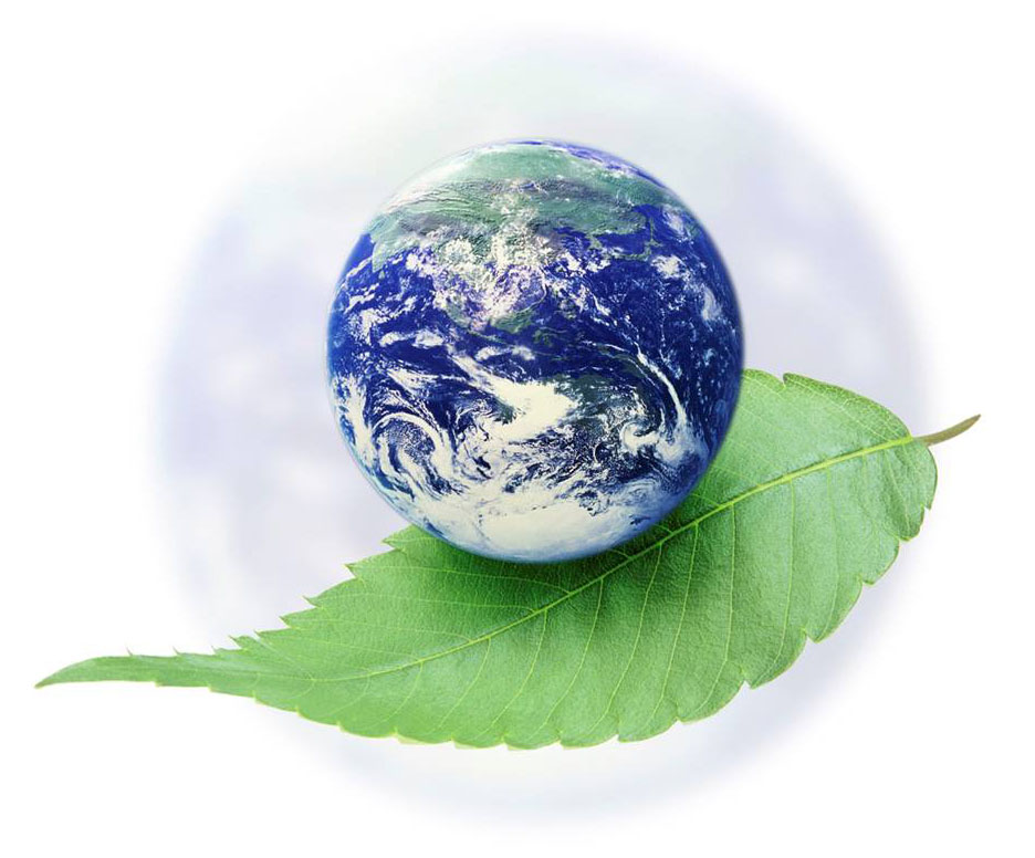 Earth day nutrition eat green go green